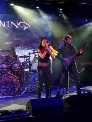 Metalwings